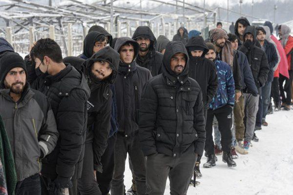 زیرا هیچ کس به فاجعه انسانی مهاجران در بوسنی اهمیت نمی دهد