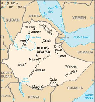 اتیوپی: بیش از 80 غیرنظامی کشته ، عاملان تحت تعقیب بودند  امنیت بین المللی