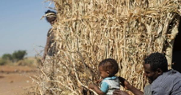 اتیوپی: سازمان ملل ، مناطق مختلفی از Tigre در آستانه گرسنگی